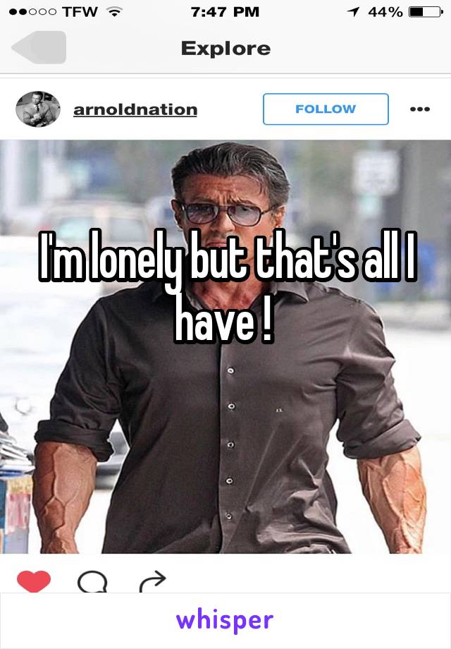 I'm lonely but that's all I have !