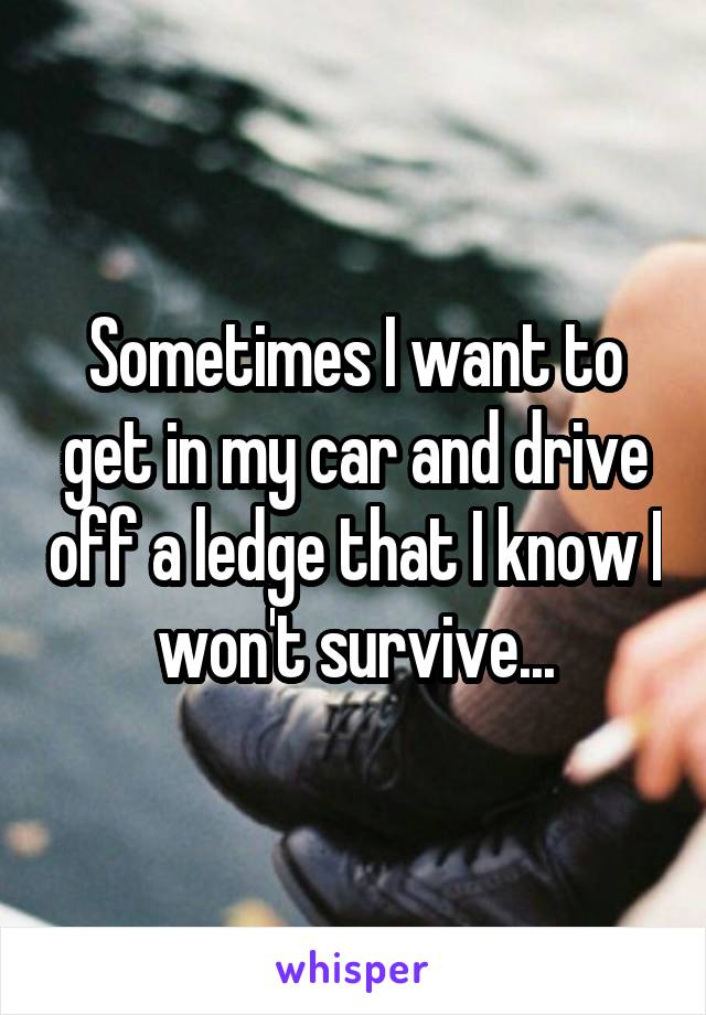 Sometimes I want to get in my car and drive off a ledge that I know I won't survive...