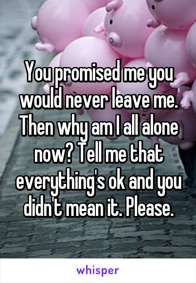 You promised me you would never leave me. Then why am I all alone now? Tell me that everything's ok and you didn't mean it. Please.