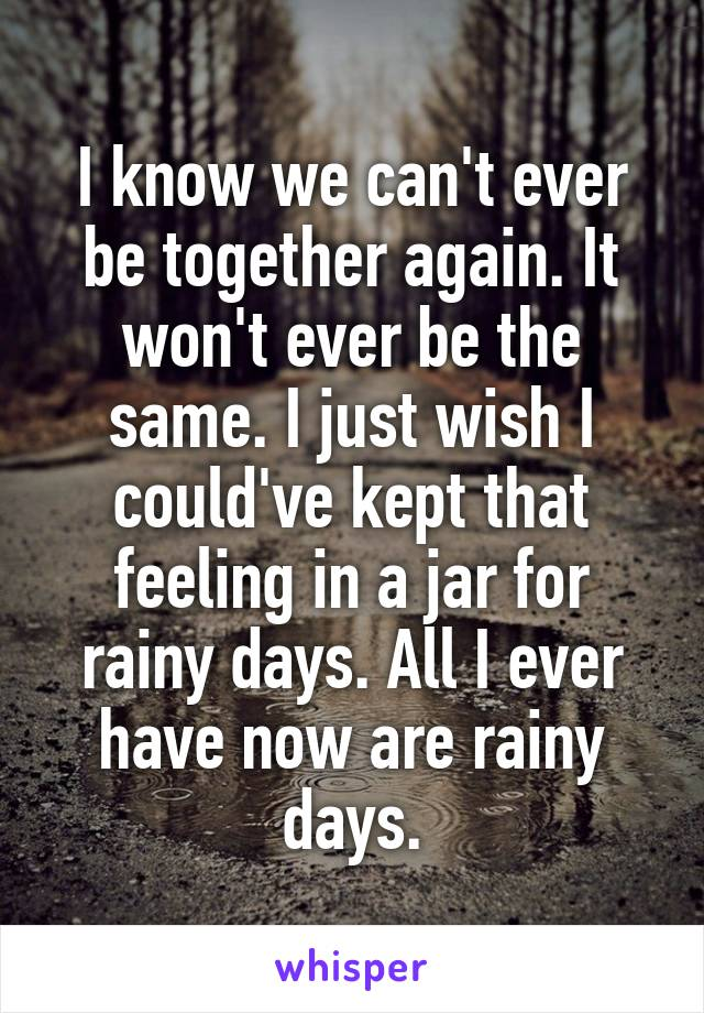 I know we can't ever be together again. It won't ever be the same. I just wish I could've kept that feeling in a jar for rainy days. All I ever have now are rainy days.