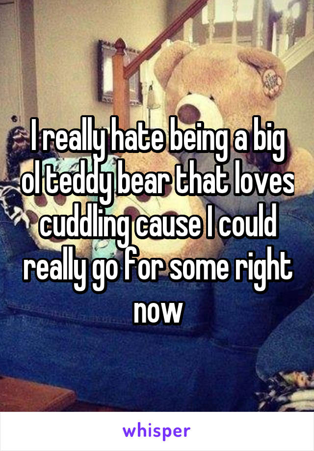 I really hate being a big ol teddy bear that loves cuddling cause I could really go for some right now