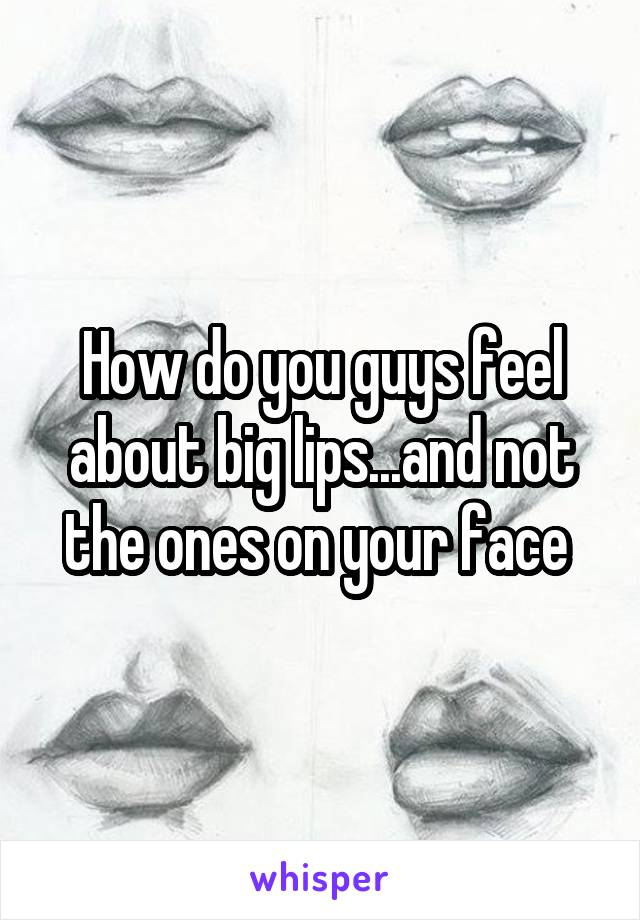 How do you guys feel about big lips...and not the ones on your face