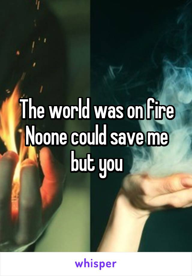 The world was on fire Noone could save me but you