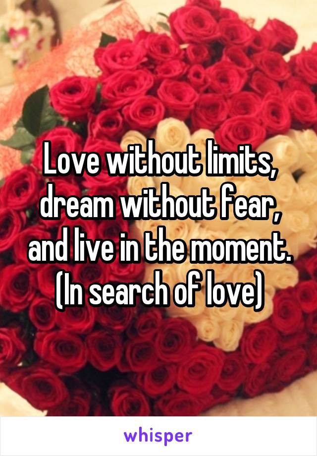 Love without limits, dream without fear, and live in the moment. (In search of love)