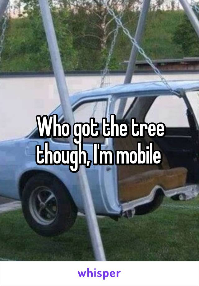 Who got the tree though, I'm mobile
