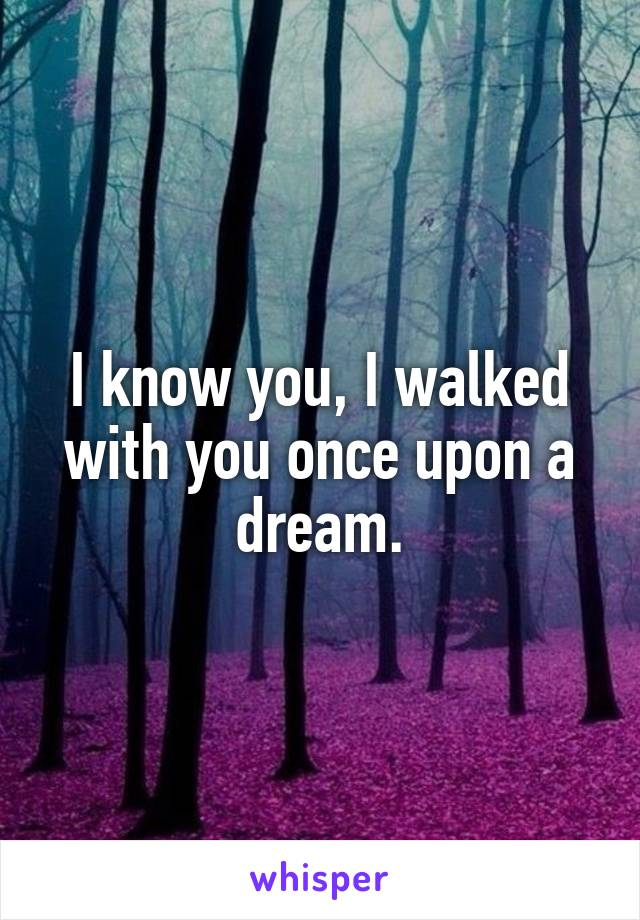 I know you, I walked with you once upon a dream.