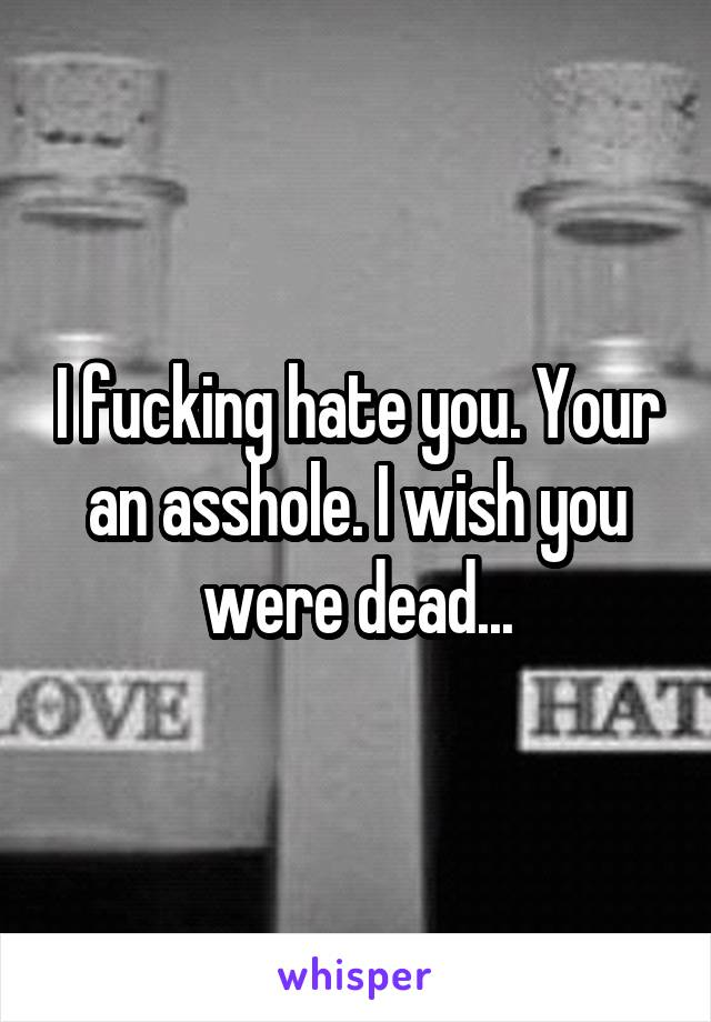 I fucking hate you. Your an asshole. I wish you were dead...