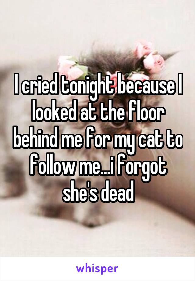 I cried tonight because I looked at the floor behind me for my cat to follow me...i forgot she's dead