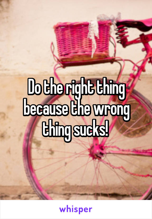 Do the right thing because the wrong thing sucks!