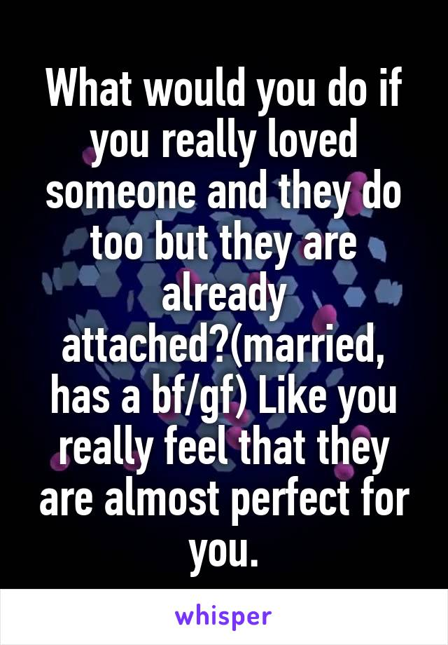 What would you do if you really loved someone and they do too but they are already attached?(married, has a bf/gf) Like you really feel that they are almost perfect for you.