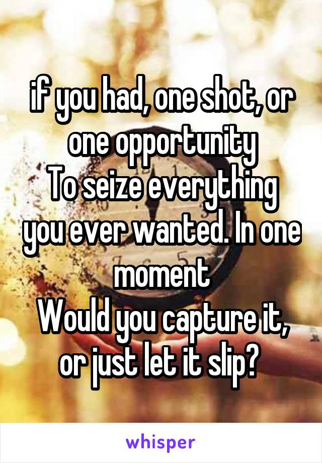 if you had, one shot, or one opportunity To seize everything you ever wanted. In one moment Would you capture it, or just let it slip?
