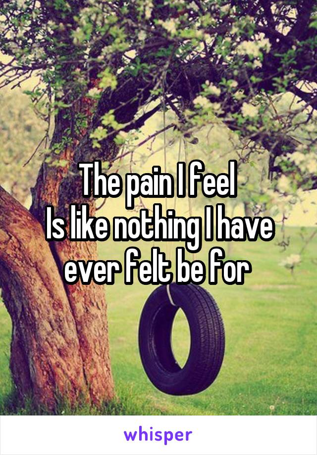 The pain I feel  Is like nothing I have ever felt be for