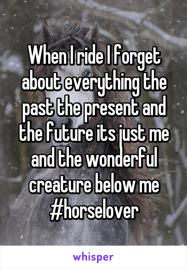 When I ride I forget about everything the past the present and the future its just me and the wonderful creature below me #horselover