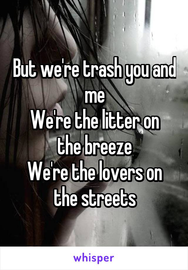 But we're trash you and me We're the litter on the breeze We're the lovers on the streets