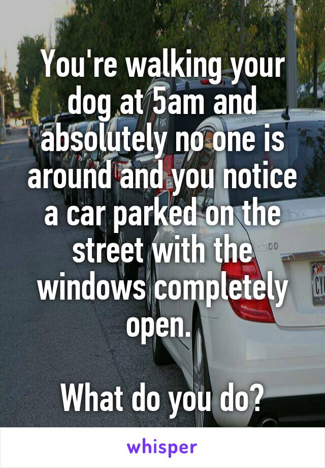 You're walking your dog at 5am and absolutely no one is around and you notice a car parked on the street with the windows completely open.   What do you do?