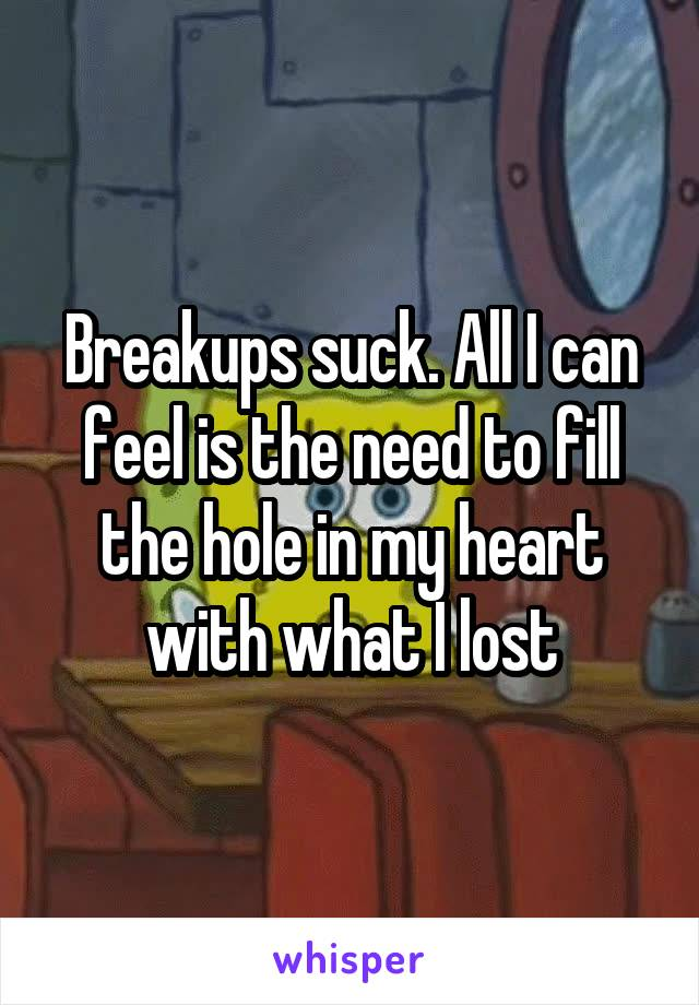 Breakups suck. All I can feel is the need to fill the hole in my heart with what I lost
