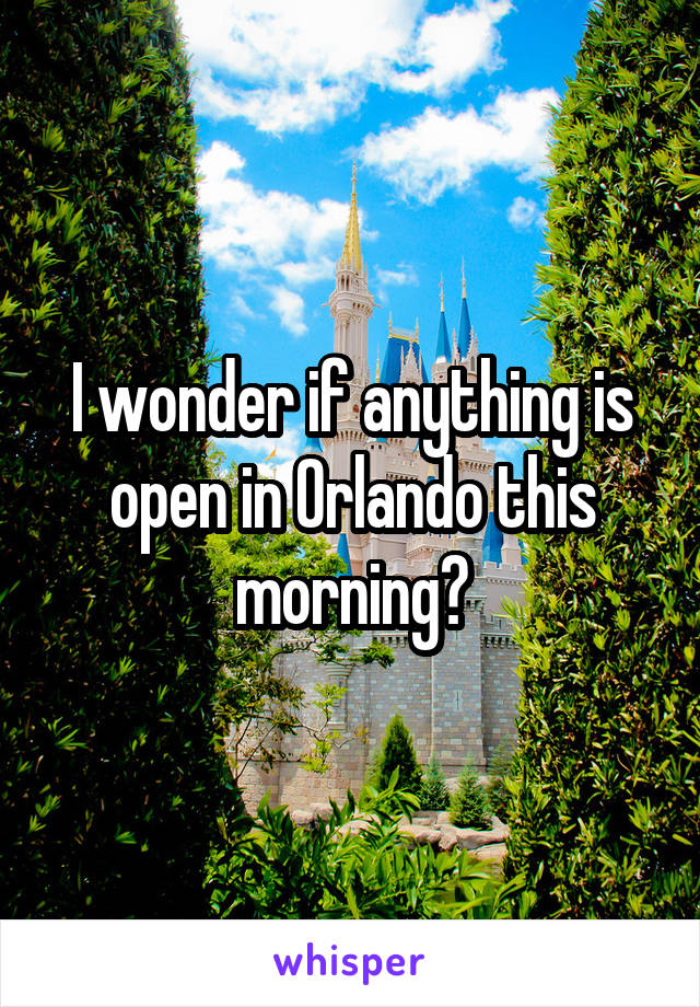 I wonder if anything is open in Orlando this morning?