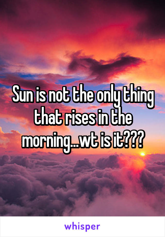 Sun is not the only thing that rises in the morning...wt is it???