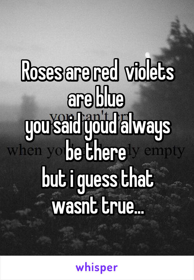 Roses are red  violets are blue  you said youd always be there  but i guess that wasnt true...