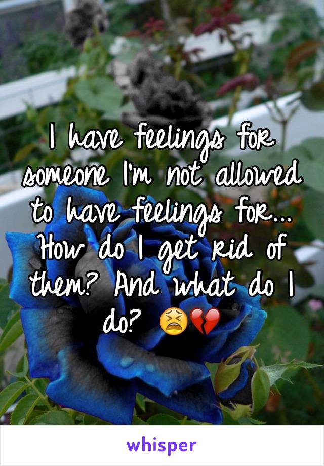 I have feelings for someone I'm not allowed to have feelings for... How do I get rid of them? And what do I do? 😫💔