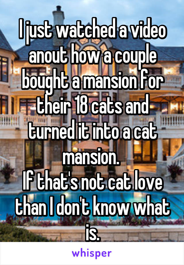 I just watched a video anout how a couple bought a mansion for their 18 cats and turned it into a cat mansion.  If that's not cat love than I don't know what is.