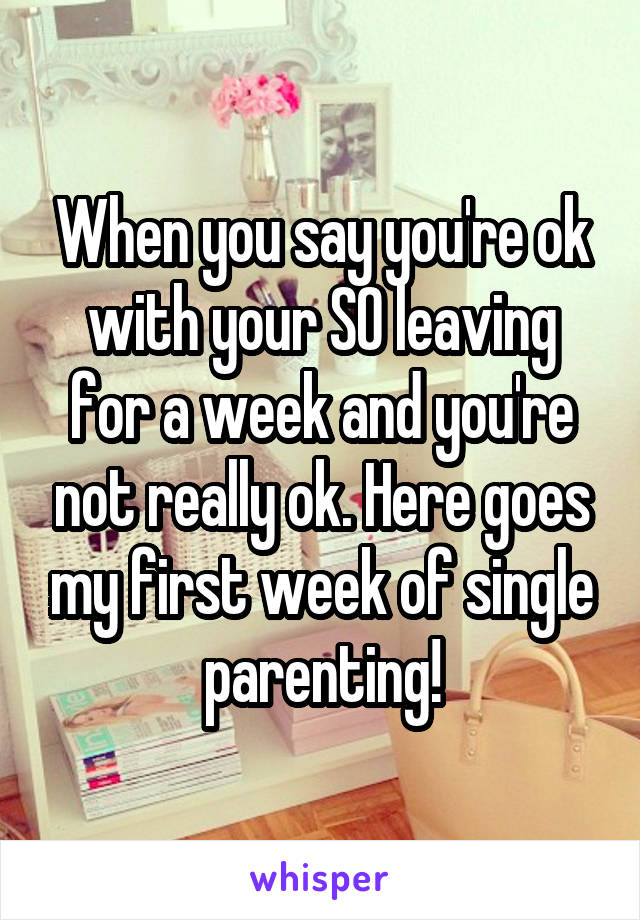 When you say you're ok with your SO leaving for a week and you're not really ok. Here goes my first week of single parenting!