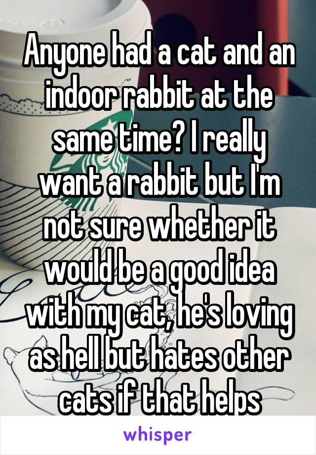 Anyone had a cat and an indoor rabbit at the same time? I really want a rabbit but I'm not sure whether it would be a good idea with my cat, he's loving as hell but hates other cats if that helps