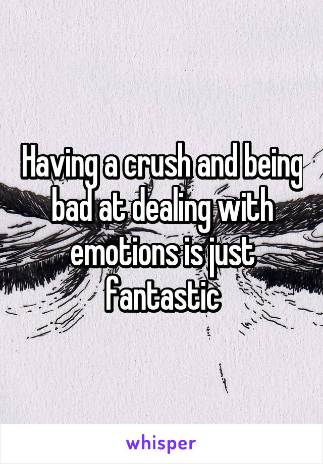 Having a crush and being bad at dealing with emotions is just fantastic