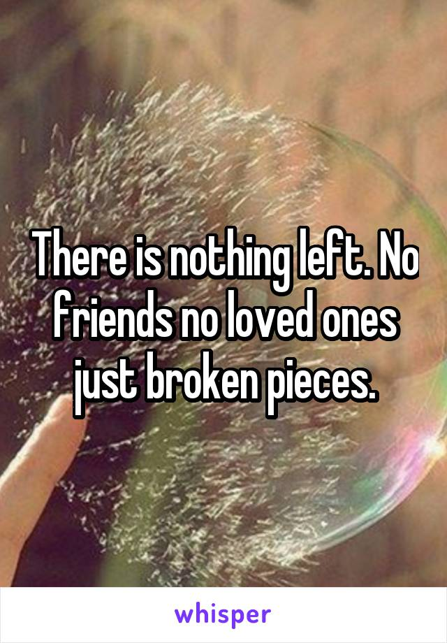 There is nothing left. No friends no loved ones just broken pieces.