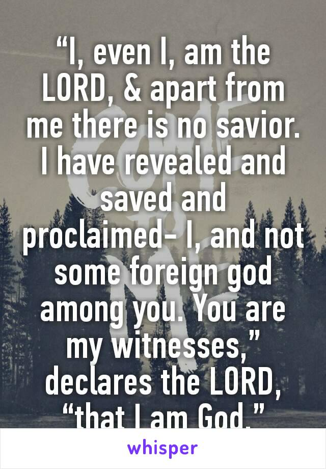 """I, even I, am the LORD, & apart from me there is no savior. I have revealed and saved and proclaimed- I, and not some foreign god among you. You are my witnesses,"" declares the LORD, ""that I am God."""