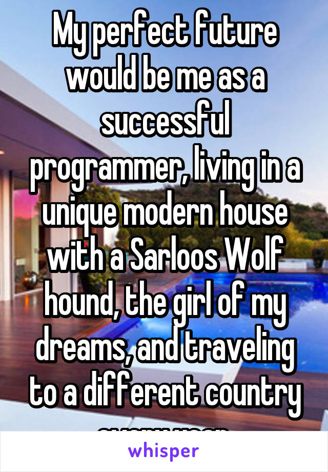 My perfect future would be me as a successful programmer, living in a unique modern house with a Sarloos Wolf hound, the girl of my dreams, and traveling to a different country every year.