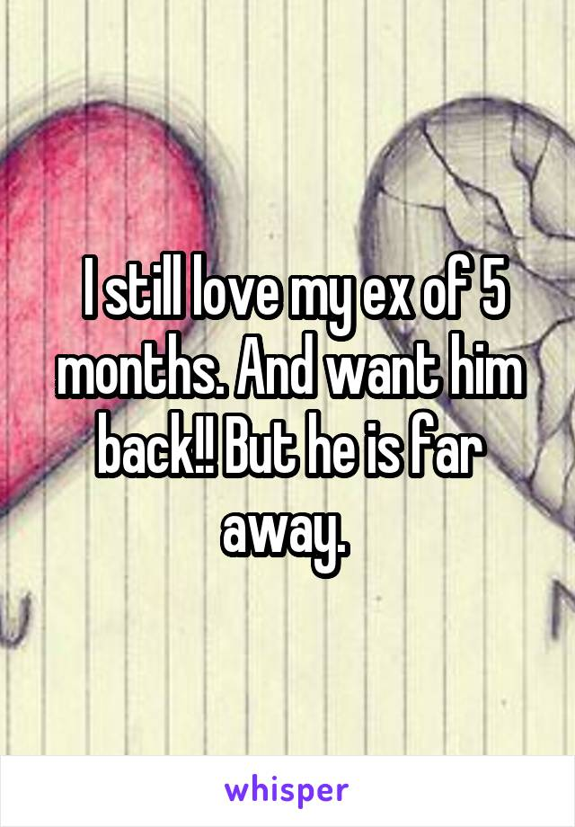 I still love my ex of 5 months. And want him back!! But he is far away.