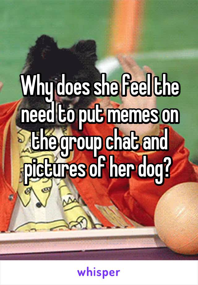 Why does she feel the need to put memes on the group chat and pictures of her dog?