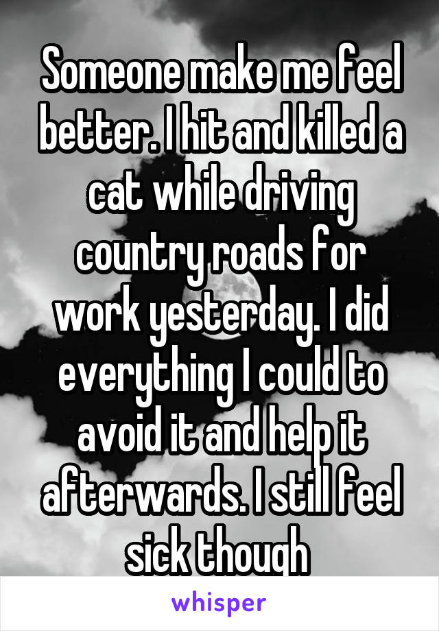 Someone make me feel better. I hit and killed a cat while driving country roads for work yesterday. I did everything I could to avoid it and help it afterwards. I still feel sick though