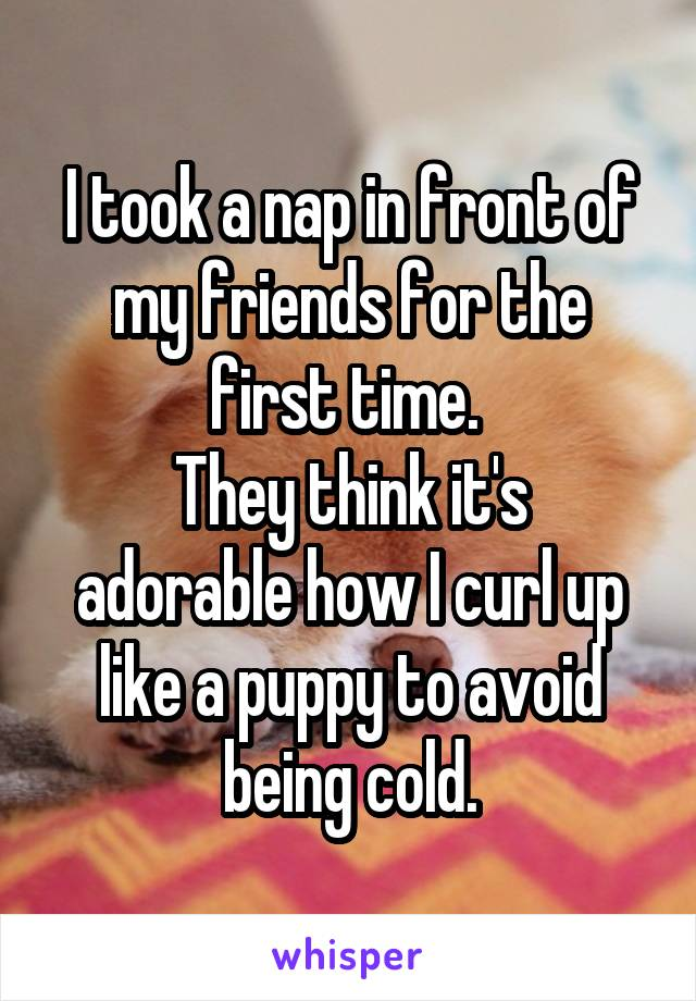 I took a nap in front of my friends for the first time.  They think it's adorable how I curl up like a puppy to avoid being cold.