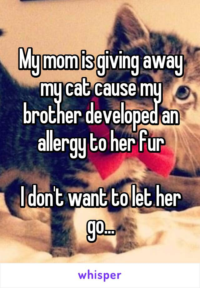 My mom is giving away my cat cause my brother developed an allergy to her fur  I don't want to let her go...