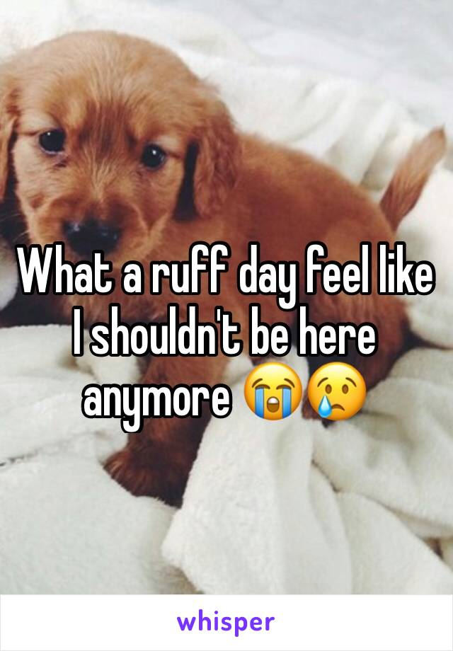 What a ruff day feel like I shouldn't be here anymore 😭😢