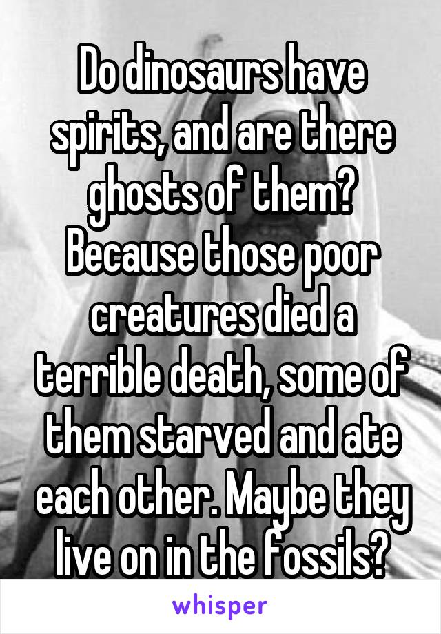 Do dinosaurs have spirits, and are there ghosts of them? Because those poor creatures died a terrible death, some of them starved and ate each other. Maybe they live on in the fossils?