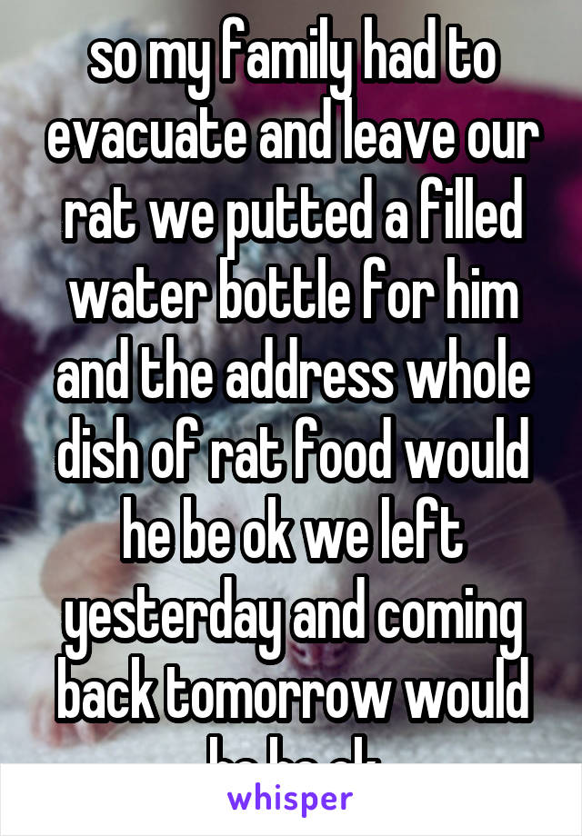 so my family had to evacuate and leave our rat we putted a filled water bottle for him and the address whole dish of rat food would he be ok we left yesterday and coming back tomorrow would he be ok