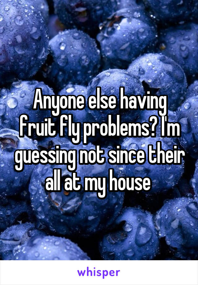 Anyone else having fruit fly problems? I'm guessing not since their all at my house