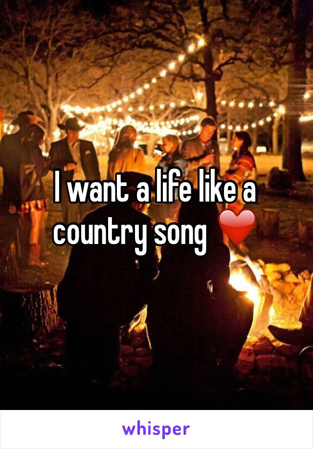 I want a life like a country song ❤️