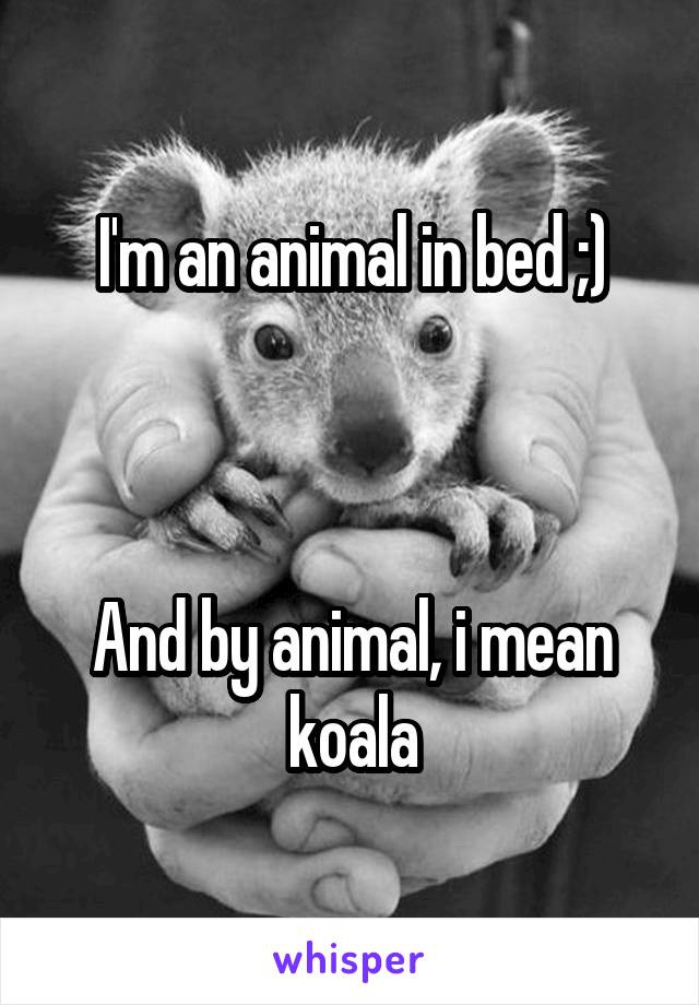 I'm an animal in bed ;)    And by animal, i mean koala