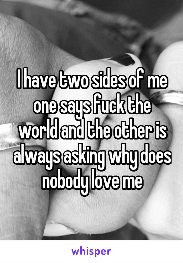 I have two sides of me one says fuck the world and the other is always asking why does nobody love me
