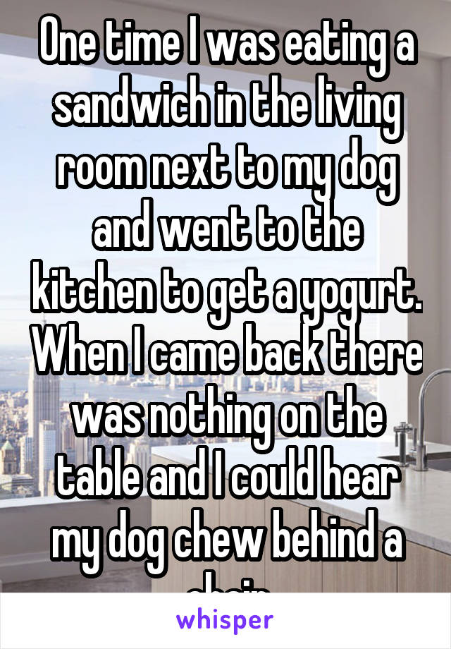 One time I was eating a sandwich in the living room next to my dog and went to the kitchen to get a yogurt. When I came back there was nothing on the table and I could hear my dog chew behind a chair