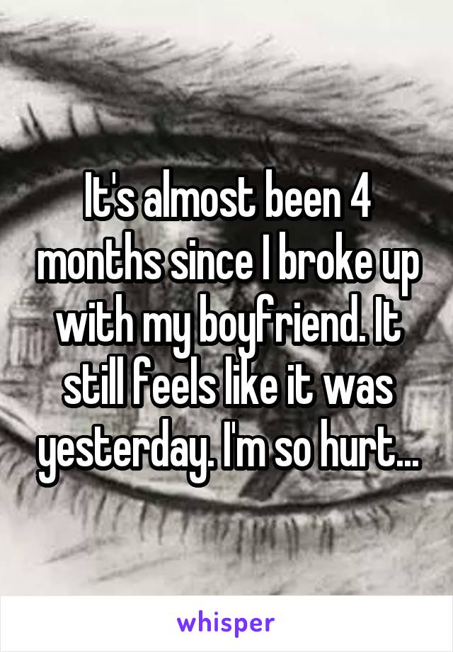 It's almost been 4 months since I broke up with my boyfriend. It still feels like it was yesterday. I'm so hurt...