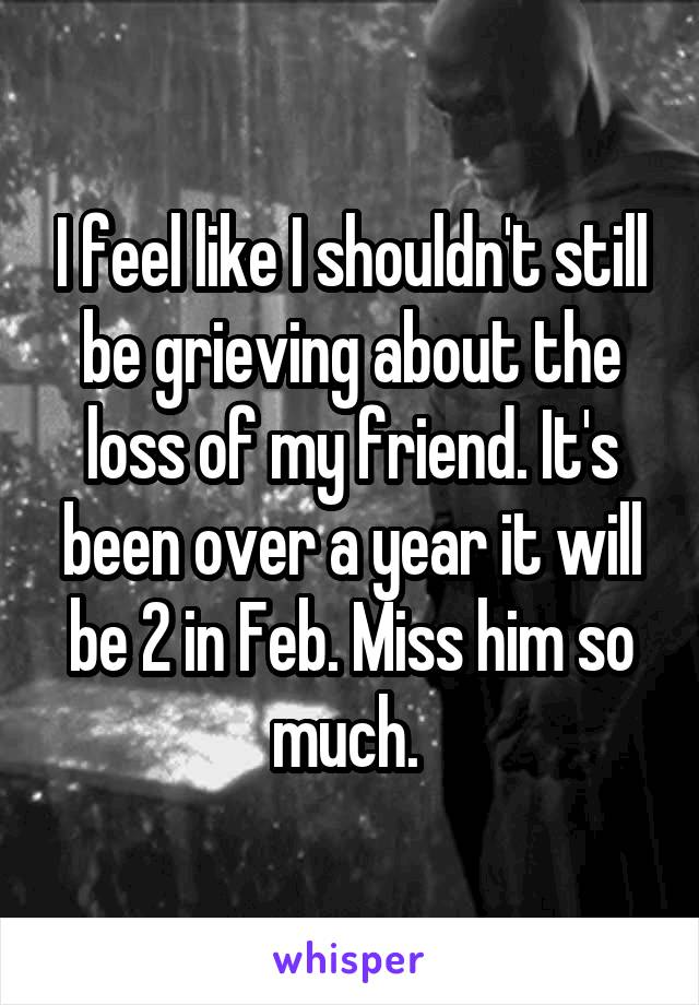 I feel like I shouldn't still be grieving about the loss of my friend. It's been over a year it will be 2 in Feb. Miss him so much.