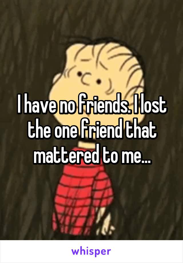 I have no friends. I lost the one friend that mattered to me...