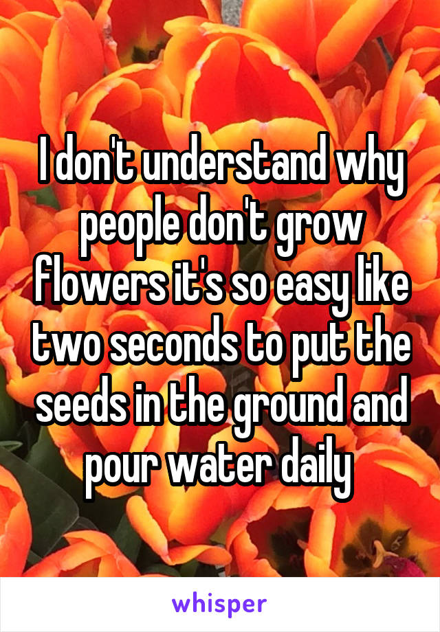 I don't understand why people don't grow flowers it's so easy like two seconds to put the seeds in the ground and pour water daily