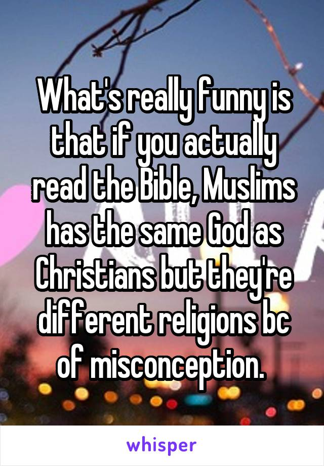 What's really funny is that if you actually read the Bible, Muslims has the same God as Christians but they're different religions bc of misconception.