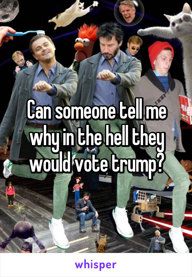 Can someone tell me why in the hell they would vote trump?